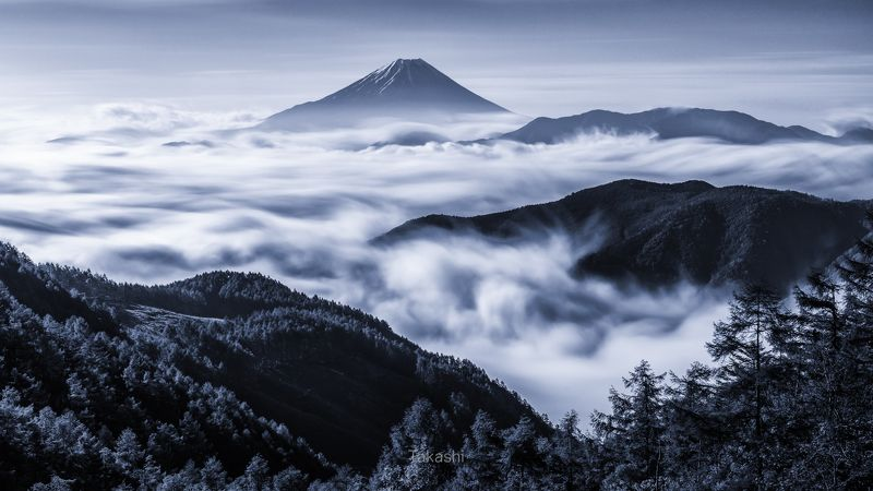 Fuji,mountain,clouds,Japan,trees,sky,sea of clouds,amazing,beautiful,blue View with sea of clouds (Blue ink version)photo preview