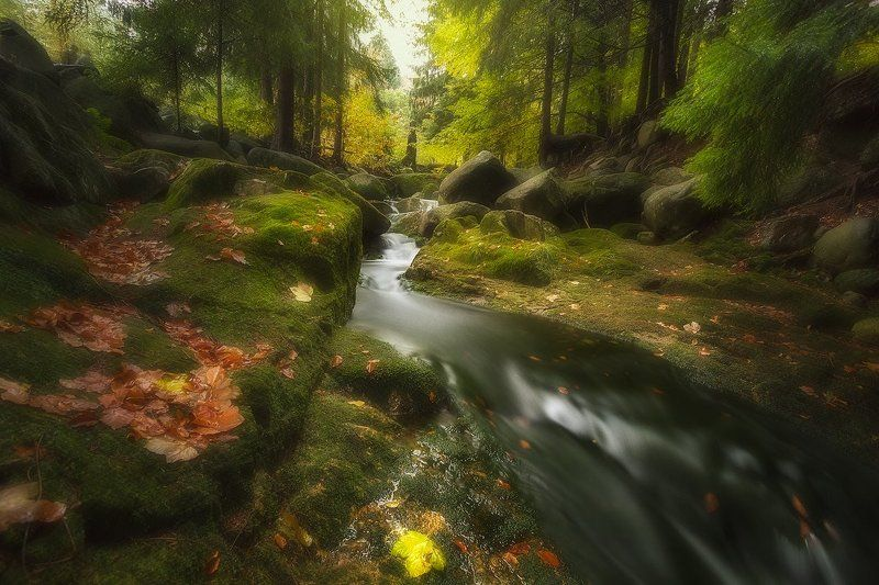 landscape,canon,mist,light,autumn,waterfall Beautiful Sound.....photo preview