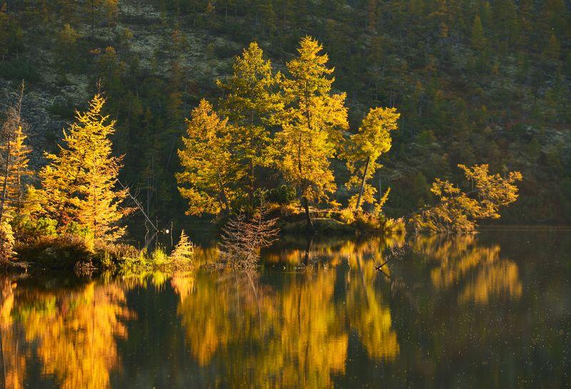 Рассвет на Озере Танцующих Хариусовphoto preview