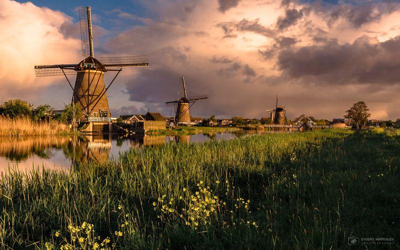 holland, kinderdijk, landscape Голландская пасторальphoto preview