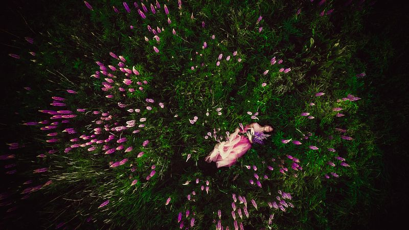 woman, beauty, flowers, outdoor, colors, drone The Wild Flowerphoto preview