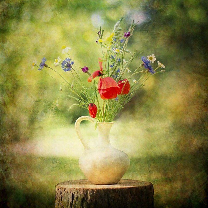 z polnymi kwiatamiphoto preview