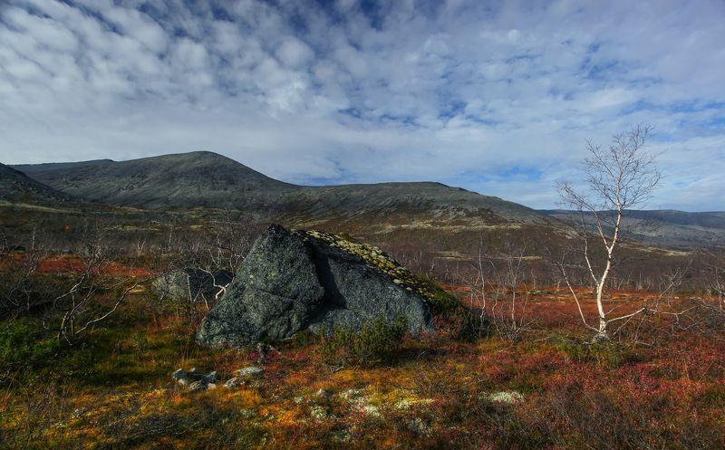 Краски северной осени lVphoto preview