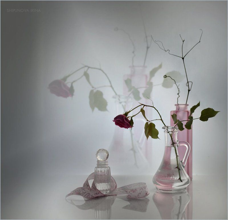 Про садовую розуphoto preview