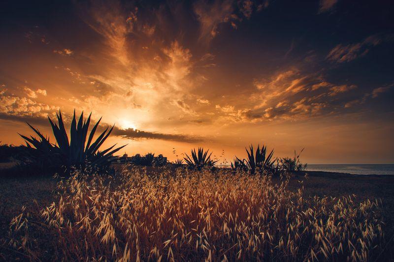sunset, golden hour, cyprus. colors Golden hourphoto preview