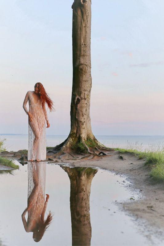 tree, sea, heaven Spiegelungphoto preview