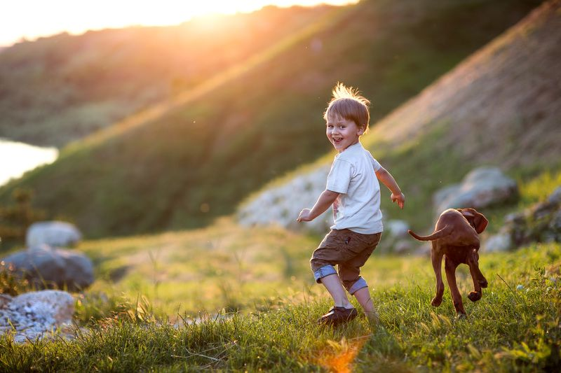 ребенок собака бежать закат свет смех игра веселье догонять трава наперегонки..photo preview