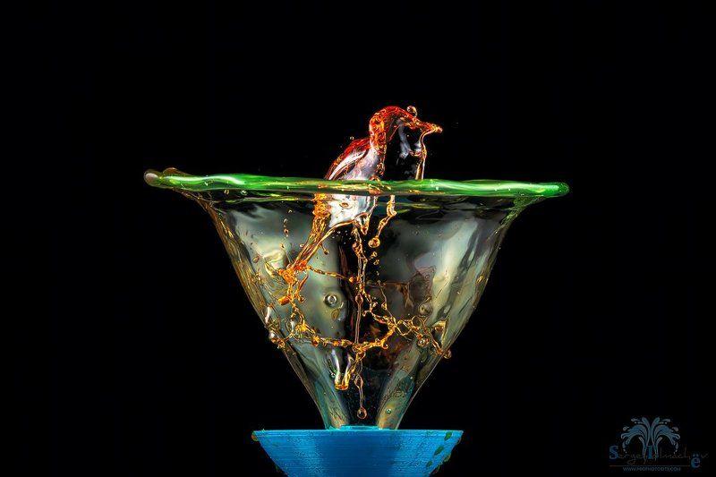 капли, жидкость, макро, арт, всплеск, сергейтолмачев, liquidart, art, liquid Птичкаphoto preview