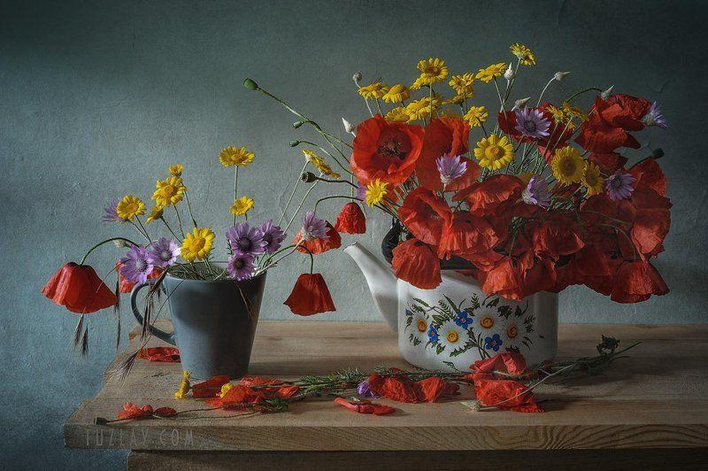 мак, красный цветок, маки, лето в чашке, лето в чайнике, бессмертник, сухоцвет, пупавка \