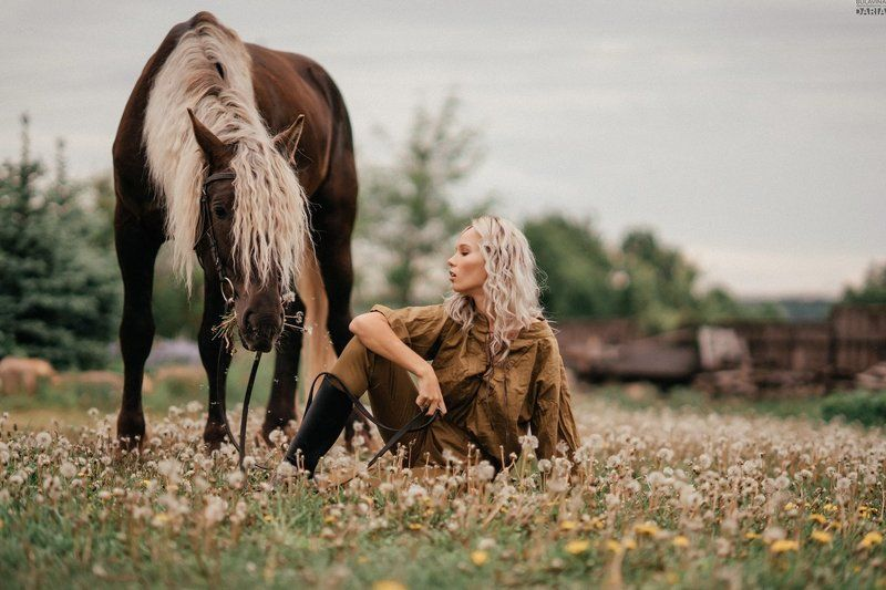 портрет,  булавина,  лошадь,  аванпост Аннаphoto preview