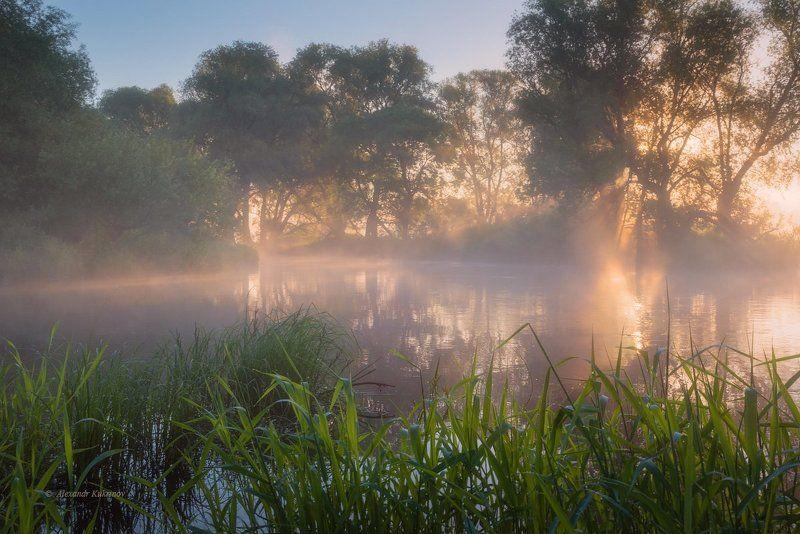 пейзаж, рассвет, угра Утренний свет...photo preview