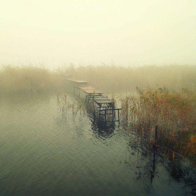 silence, water, mist, foggy, bridge, minimalism Silence..photo preview