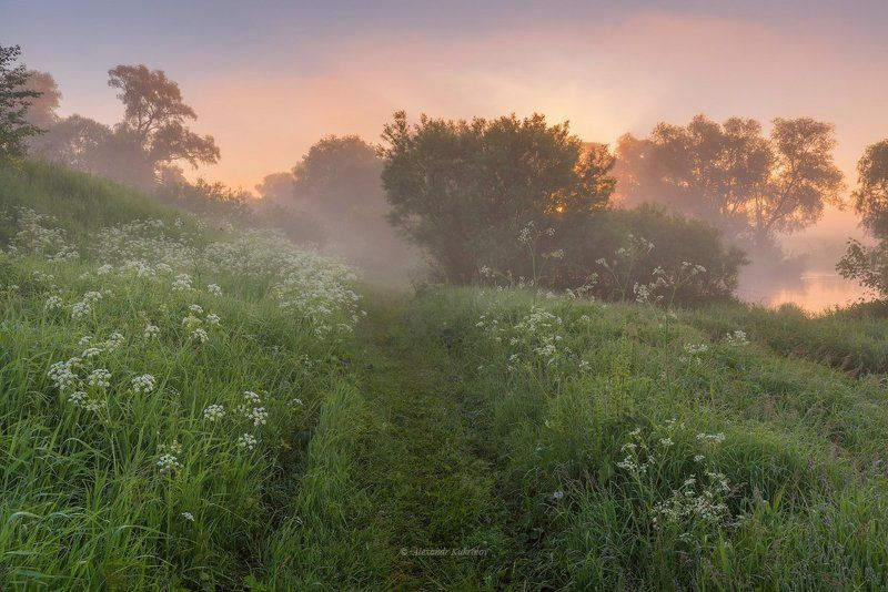 рассвет, пейзаж, угра Угра предрассветная...photo preview