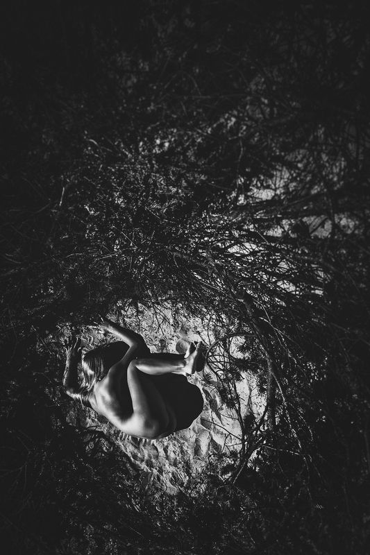woman, nude, nest, black and white The Nestphoto preview