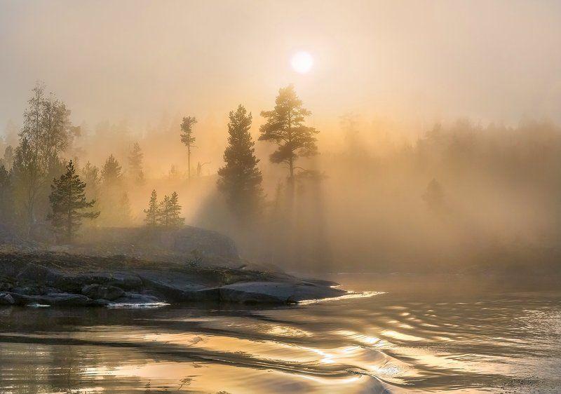ладожское озеро, карелия, шхеры, лето, туман, скалы, лес, сосны, берег, фототур, остров, путешествие, плавание, вода, солнце, закат, отражение, лучи Туманный бархат солнцаphoto preview