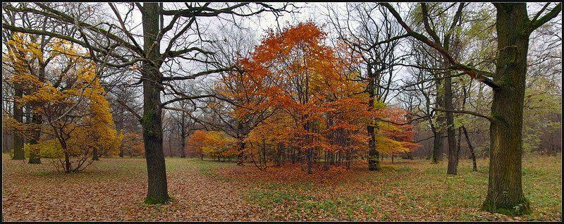 Поздняя, Осенняя...photo preview