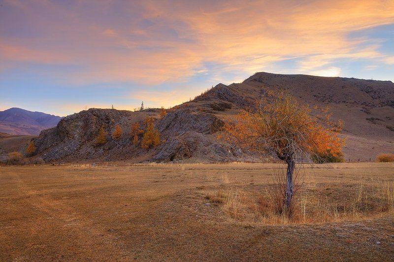 природа, пейзаж, утро, рассвет, осень Золотое утроphoto preview