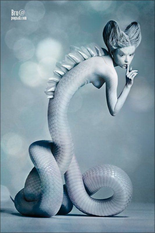 девушка, дракон, секрет Как приручить драконаphoto preview