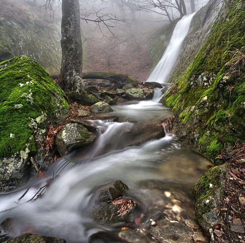 Февральские воды.photo preview