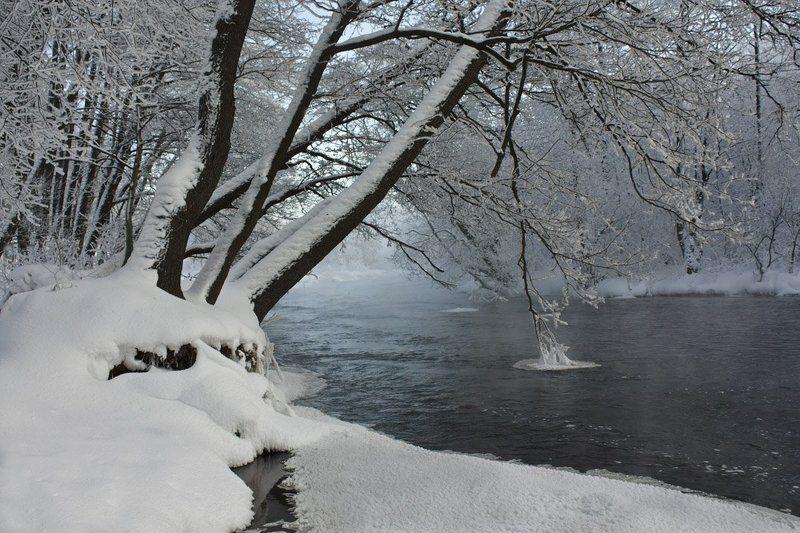Зимний этюдphoto preview