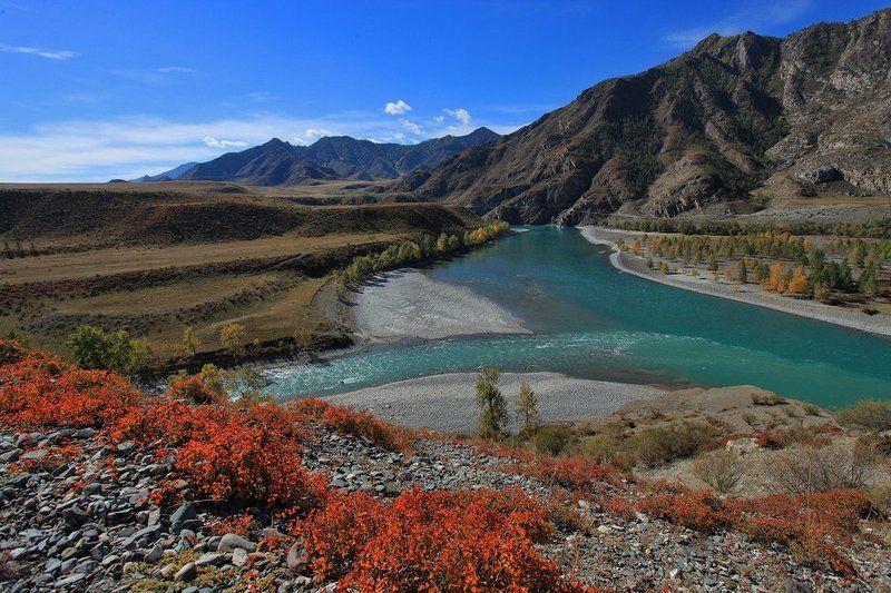 горный алтай, пейзаж, природа, река, катунь, чуя, горы, осень Слияние великих рек Алтаяphoto preview