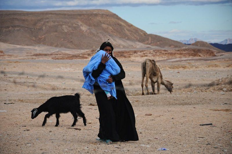 бедуины, кочевники Кочевникиphoto preview