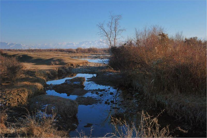 природа Пока февраль ,когда же...лето.....photo preview