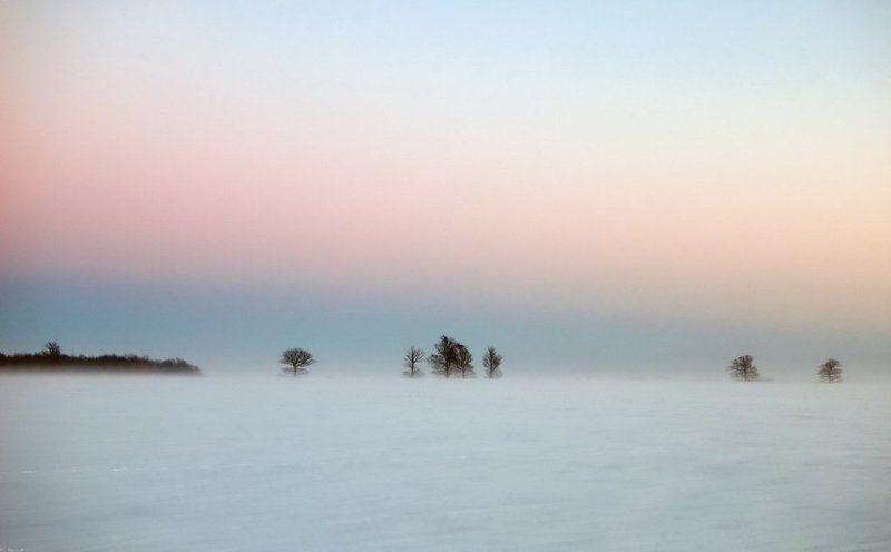 метель,lithuania,evening,snow,after sunset,fog,mist,minimalism,winter Mетель IIphoto preview