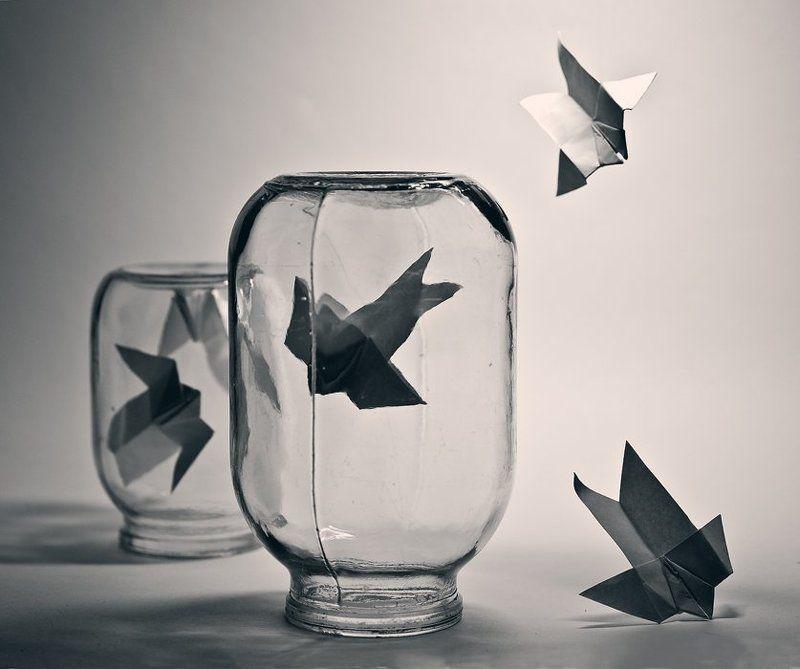 оригами, банки, самолётики Научиться летать...photo preview