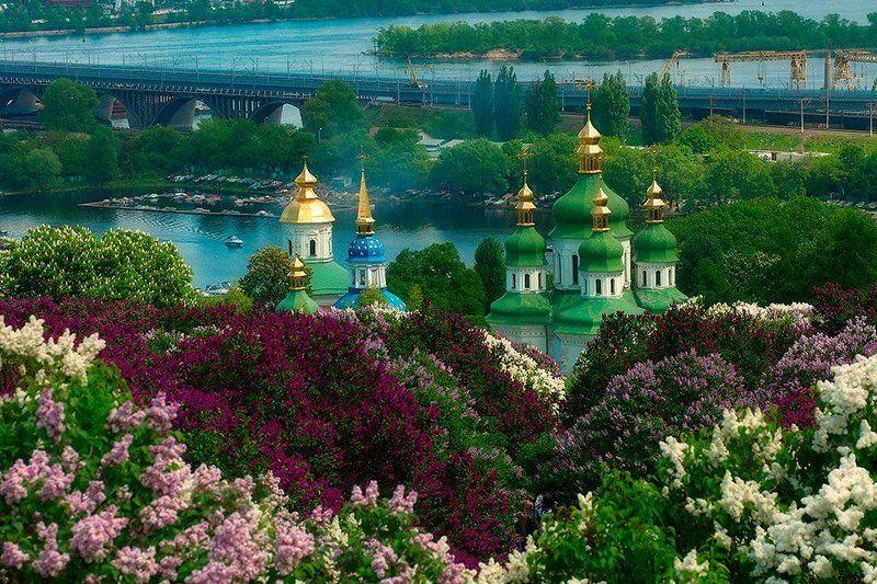 город, киев, церковь, сирень, река Стольный Градphoto preview
