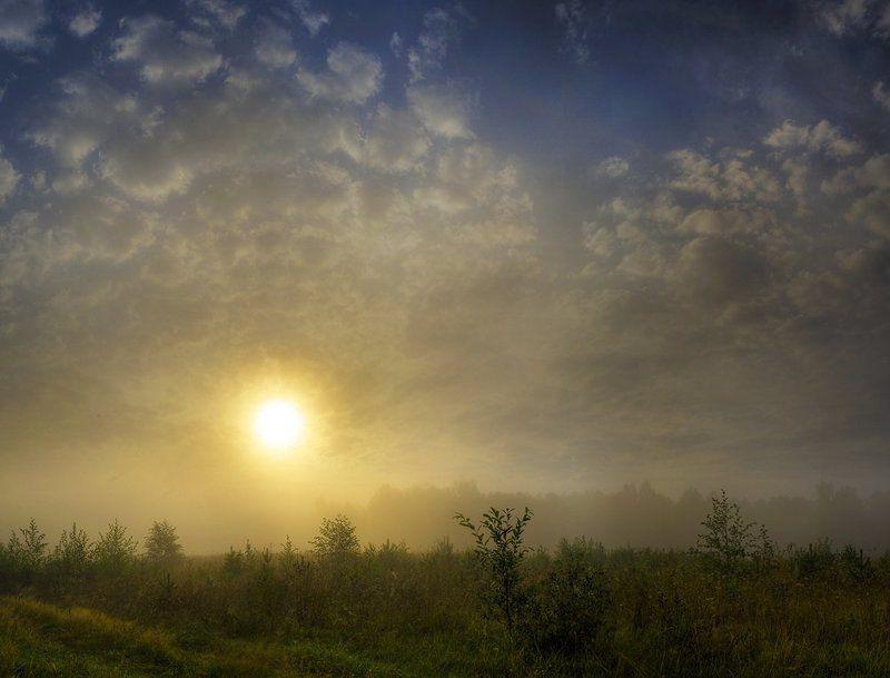 утро, туман, август Утроphoto preview