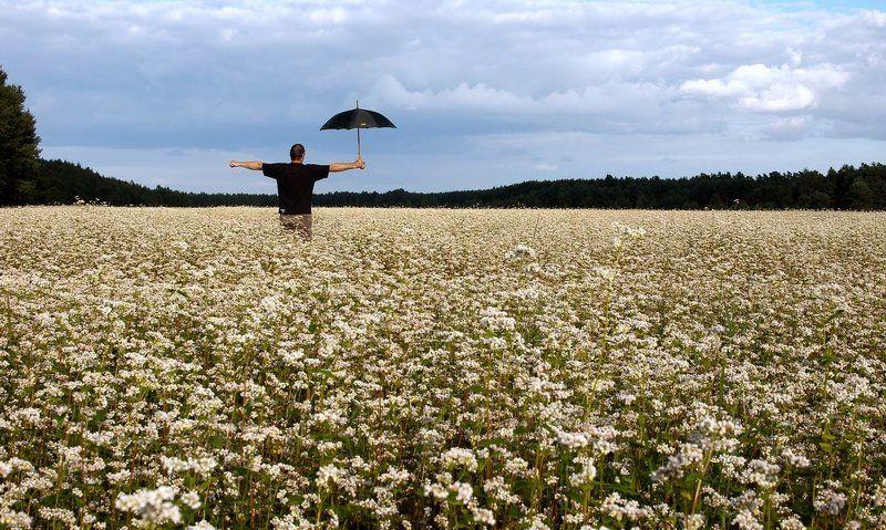 чучело,nikon,d80,buckwheat,lithuania Чучелоphoto preview
