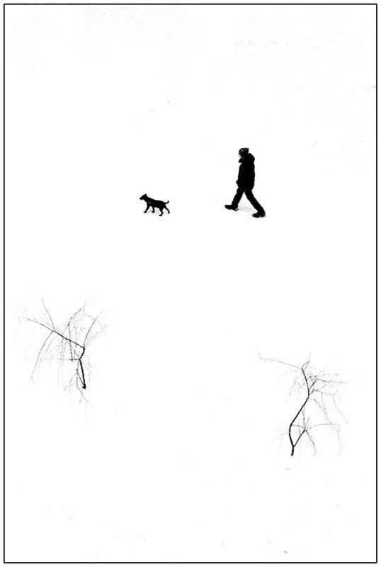 Прогулка с собакойphoto preview
