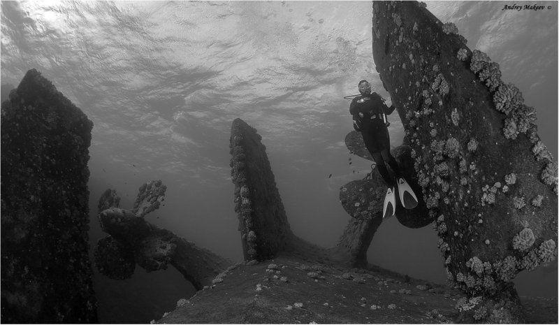 красное море, затонувшее судно посейдония Девушка с вес... с рулём.photo preview