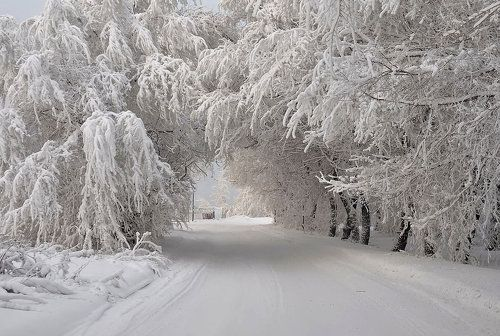 Мороз на Енисее.