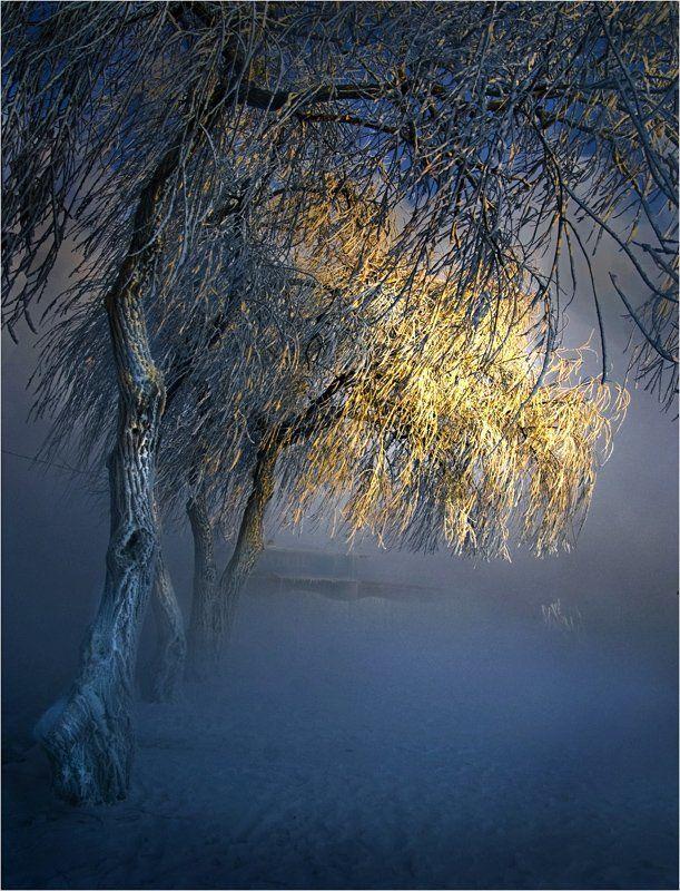 зима, снег, мороз Тёплый луч морозным утромphoto preview