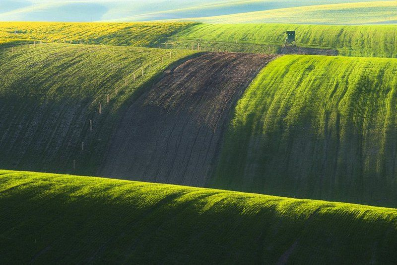 marcinkesek, landscape, moravia, light Fieldsphoto preview