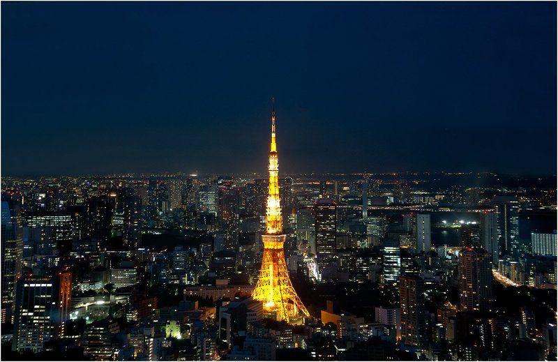 токио Big city in nightphoto preview