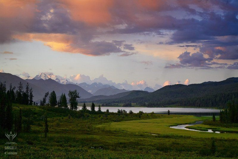 фотопроект, неизвестный, казахстан, природа, фотосафари, kazakhstan, photo, safari ВКОphoto preview