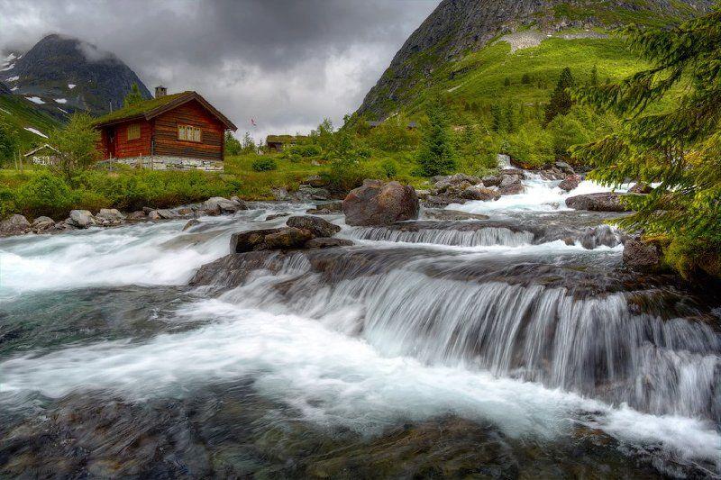 Из жизни одной рекиphoto preview