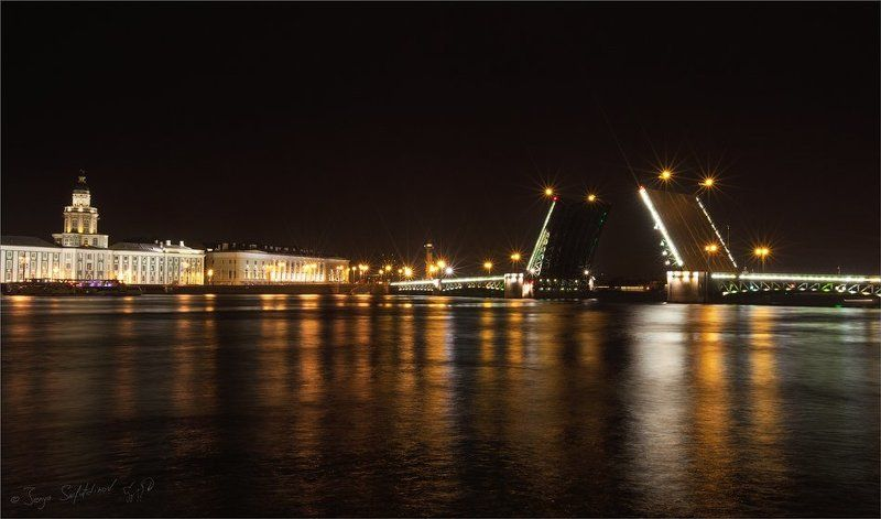 Мосты ночной Невыphoto preview