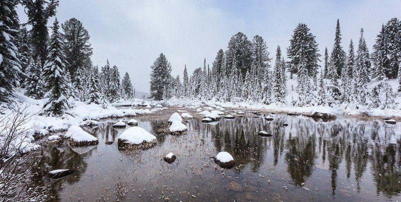 тихо падал молодой снегphoto preview