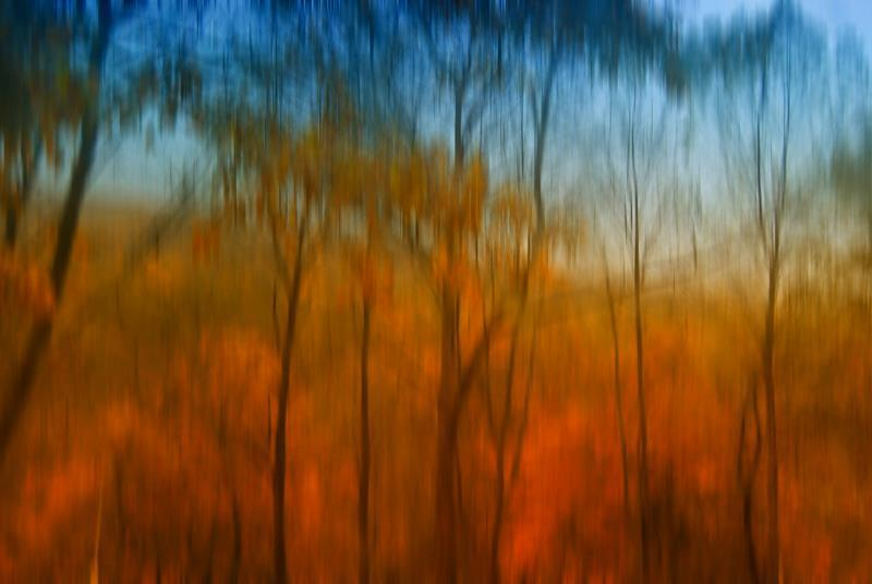 дождь, капали, стекло, осень, краски Утренний дождь рисует по окнуphoto preview