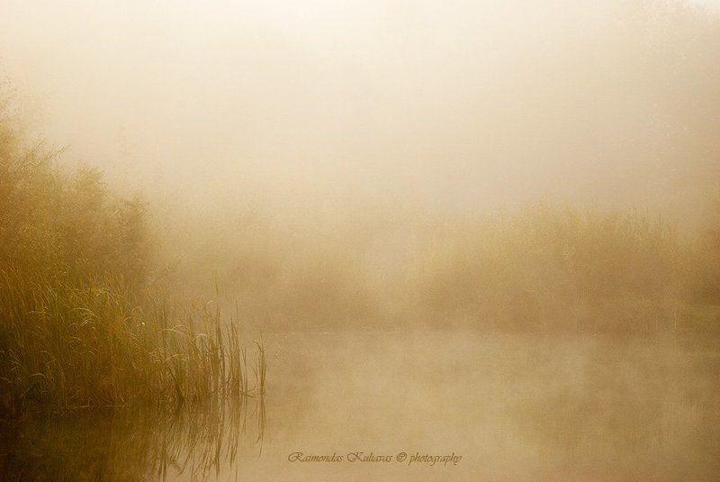 fog, mist far far-flung fog sheetphoto preview