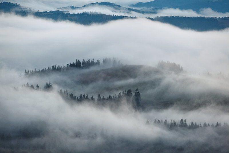карпаты, осень, утро, туман ...Fog...photo preview