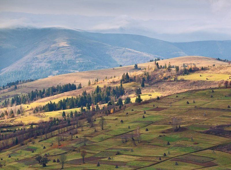 карпаты, осень, утро, свет, холмы ...Карпатское спокойствие...photo preview