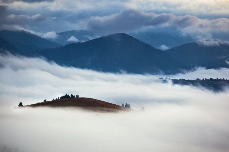карпаты, утро, туман ...Island...photo preview
