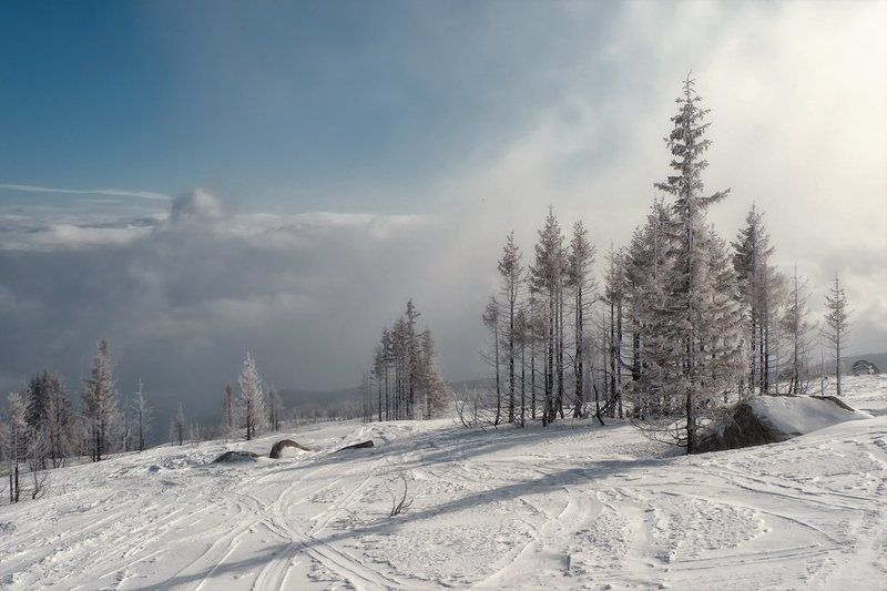 Vitoshaphoto preview